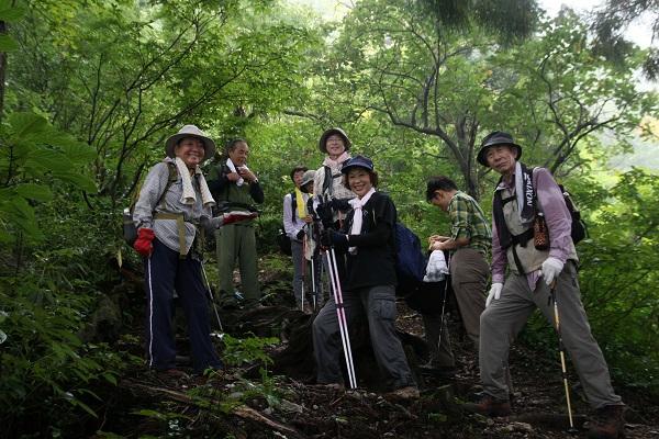 http://kami1tabi.net/shinrin/images/IMG_4740.jpg